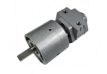 Air Gear Motor 1UP-NRV-16-GR15