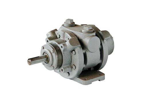 Lubricated Air Motor 16AM-FRV-2